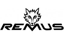 Remus Decal